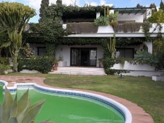 The Turtle Villa in Marbella with privat pool