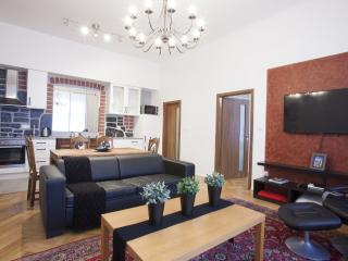 Spring Fling!!!  NEW Contemp Center.. 2 bd/2 ba Londynska 36, Prague 2