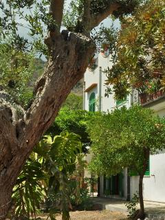 Gardenhouse n1 on the largest Taormina beaches