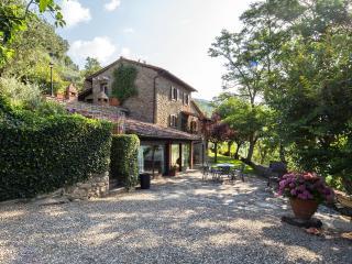 Villa dei Ciliegi: the pool is a dream, Cortona