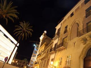 facade of the Palace at night