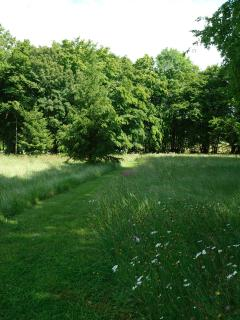 Meadow walk at the bottom of the garden