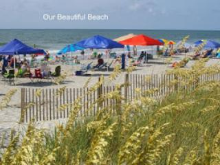 WONDERFUL PIER HOME AT THE BEACH! Book Weeks in May & June!!