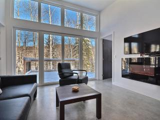 FEBRUARY 2017 ★2 NIGHTS : C$560/ ALL INCL ★Mini Loft ★10mn from Tremblant, Mont Tremblant
