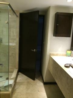 spacious bathroom with large shower and double sinks