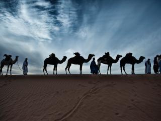 Caravane de Reve, M'Hamid