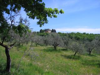 Beautiful Large Villa Close to Florence - Villa Gialla - 14, Rignano sull'Arno