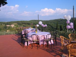 Beautiful Large Villa Close to Florence - Villa Gialla - 14