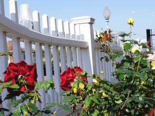 Our White Picket Fence and Rose Garden.