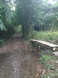 This footbridge crosses the creek that takes you to our property at Posada La Lomita.