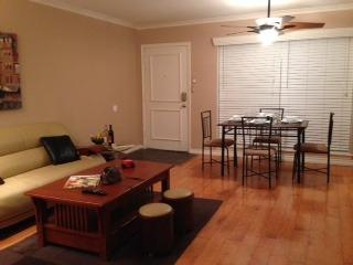 Beautiful/Unique/Practical Location-min 3 wks, Dallas