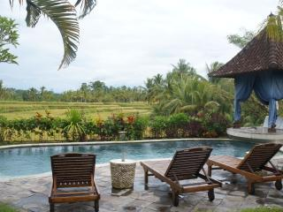 Three Bed Room Villa with Rice View & Salty pool, Peliatan