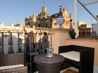 DUPLEX  ATIC WITH GREAT VIEWS, Siviglia