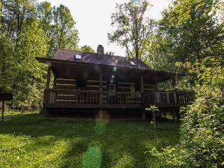 Beautiful Log Cabin near Lake Logan