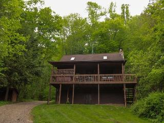 Pioneer Log Cabin Rental, South Bloomingville