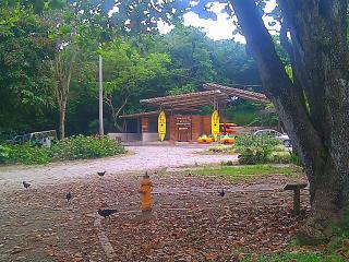 Tropical Caribbean Beach House