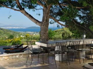 Villa Olive garden Trogir