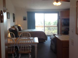UNIT 24 - Deluxe, North Truro
