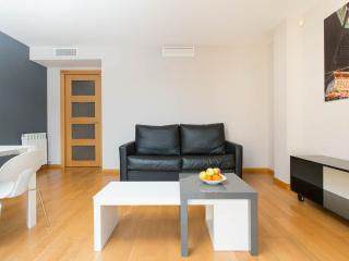 Nice apartment in Born area free wifi, Barcelona