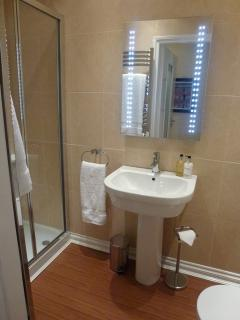 Extra wide shower with large rain head shower and body jets, heated, demisting mirror