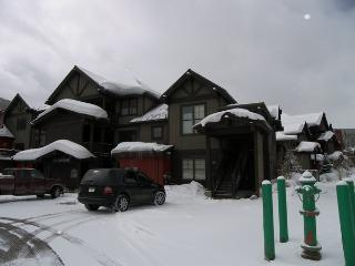 The Cache 2 Bed 2 Bath, Copper Mountain
