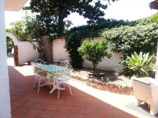 Ischia - Forio Splendido Appartamento Vacanze