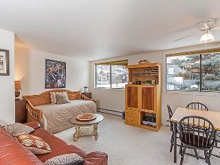 Telluride Lodge 401