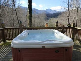 Like new 5 person hot tub with mountain view!