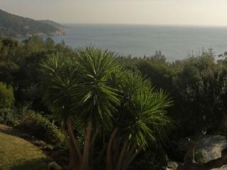 Holiday rental Villas Ramatuelle (Var), 180 m², 10 000 €
