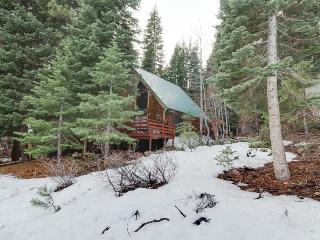 Unique & cozy cabin in the woods with a private hot tub!, Truckee