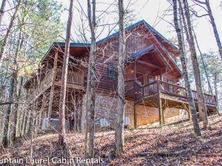 THE GREAT ESCAPE- 3 BR/3BA, SLEEPS 9, WOOD BURNING FIREPLACE, HOT TUB, PING PONG, WIFI, MOVIE ROOM, CHARCOAL GRILL, $140 A NIGHT!, Blue Ridge