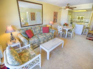 Beautifully Decorated 1-Bedroom with a Partial Ocean View, Kihei