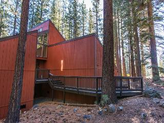 3BR/2BA Contemporary Pine Forest House w/ Loft, South Lake Tahoe