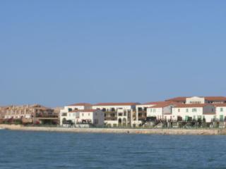 Cortaderia 20, Saint-Cyprien-Plage