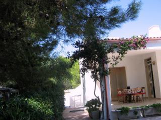 Villa Commenda A, Campomarino