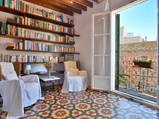 Luxury apt near Plaza Sant Francesc