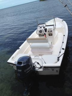 17 foot Center console Triumph boat with Yamaha motor.