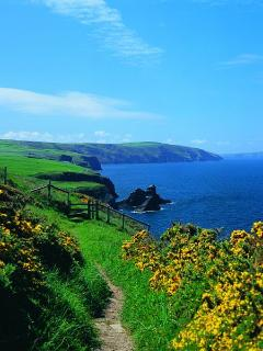 Amazing views from the Pembrokeshire and Ceredigion Coastal Paths nearby