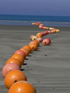 Rossnowlagh beach buoys