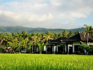 Pandawa Village Villas, Lovina Beach
