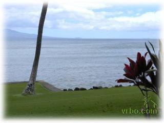 Paradise Found!, Maalaea