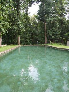 The Natural Stone Pool
