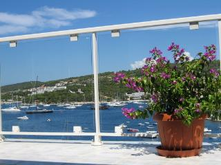 Apartment Dalmatia-Spacious terrace with seaview, Hvar