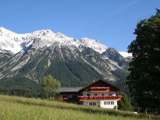 Haus Heidi - Alpenrose Apartment, Ramsau am Dachstein
