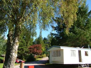 Silver Caravan with garden views, Fort William