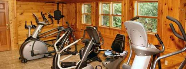 cabin resort fitness center