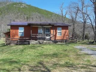 Pleasant Bank River Front Rentals Log Cabin