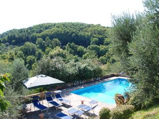 Large, spacious farmhouse with villa- like proportions in the hills of northwest Lucca. SAL PLZ