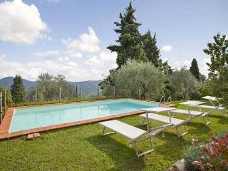 Charming farmhouse high in the hills dividing Lucca from the Versilian coast. SAL FIO