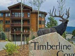 TIMBERLINE COVE #208, Frisco